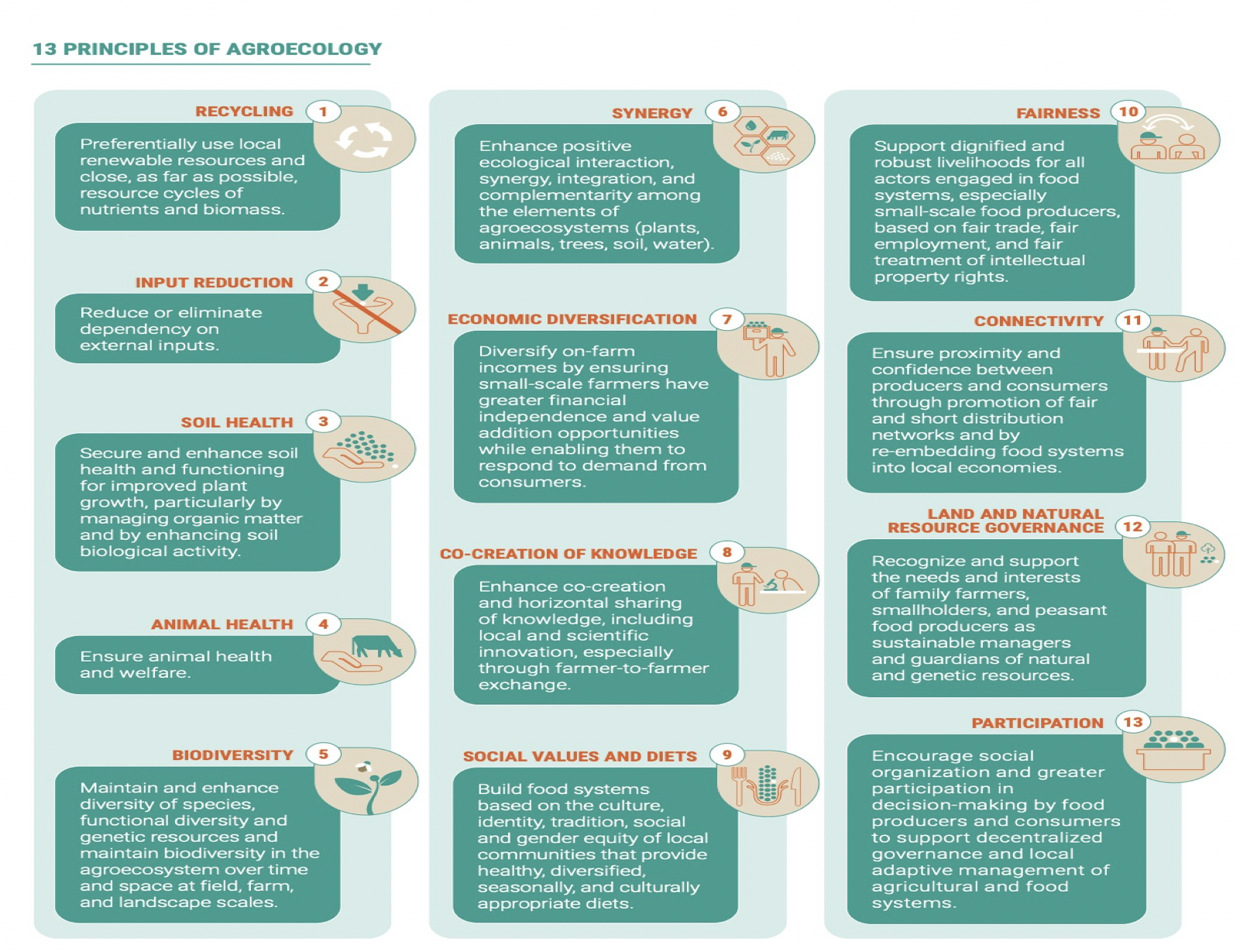 13 principles of agroecology