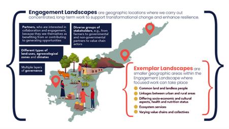 Engagement landscapes