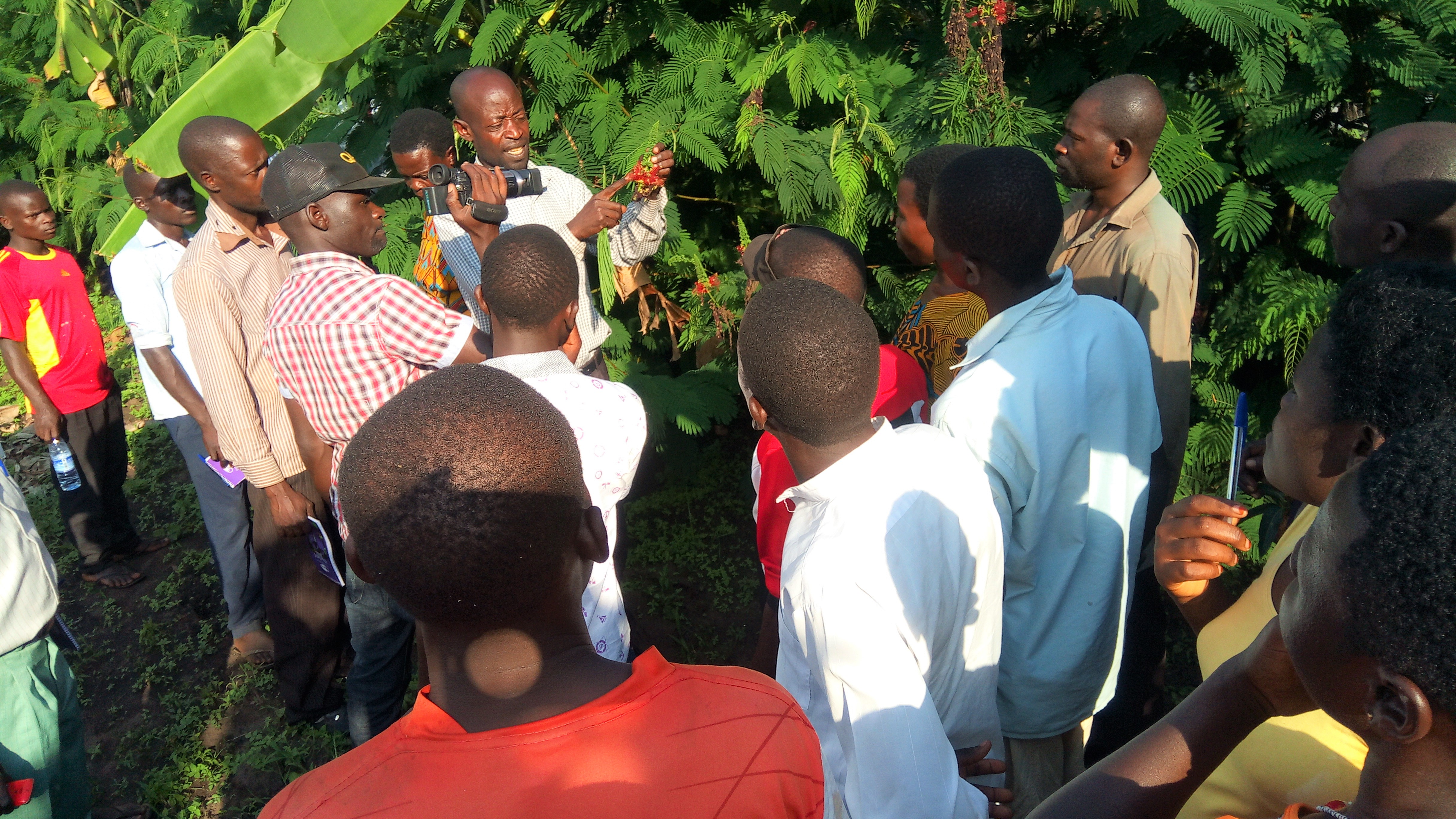 Richard Namunyu, a model farmer explaining about a multipurpose tree-Calliandra calothyrsus to women and youth. Photo: National Forestry Resources Research Institute/ Charles Galabuzi