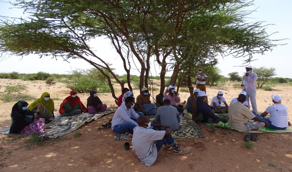 Staff from World Vision Somalia and farmers engage in discussions on successes, challenges and opportunities, during the JRLM field visits. Photo: World Vision Somalia/ Aadan Maxamed Caqli