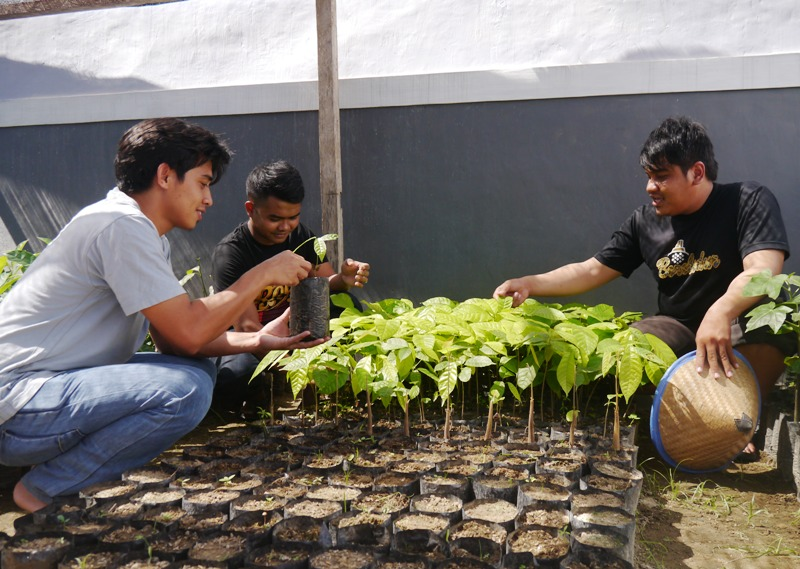 Tree nurseries increase availability of quality seedlings in Gorontalo
