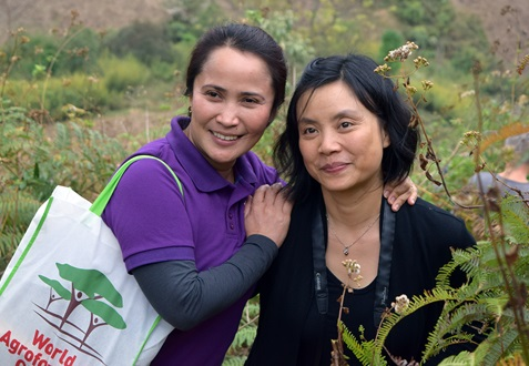 Australian support for agroforestry development in Viet Nam