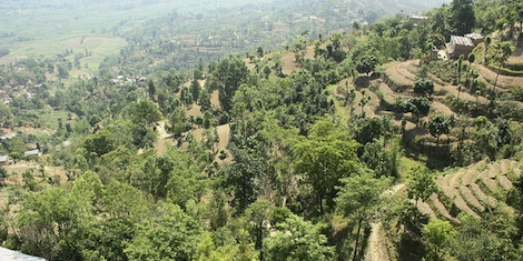 Kathmandu Declaration calls for a National Agroforestry Policy for Nepal